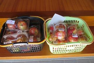 リンゴ出荷