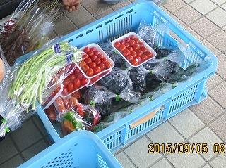 ミニトマトのパック