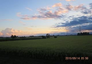 朝の雲採用