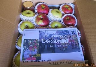 贈答用のリンゴ