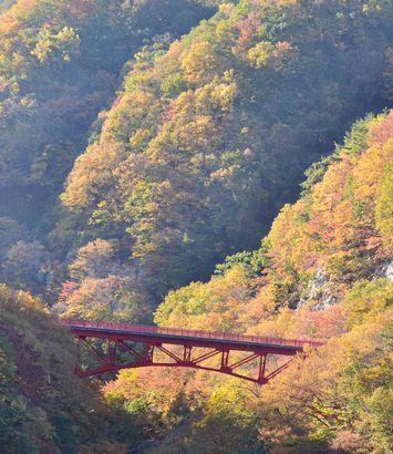 028高井橋