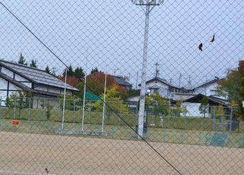 004りんちゃん2
