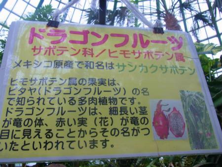 syukusyo-RIMG0122_20150906183702879.jpg