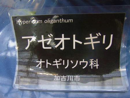 syukusyo-RIMG0128.jpg