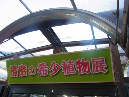 syukusyo-RIMG0134_20150906184958908.jpg