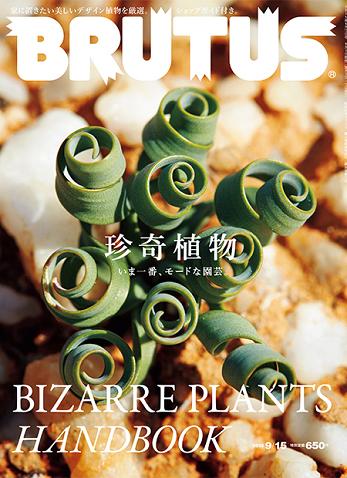 BRUTUS ( 2015.9.15 珍奇植物 )