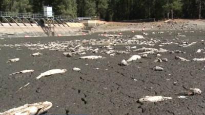 california-lake-runs-dry-overnight-1.jpg