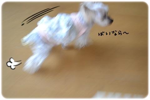 バトン (5)