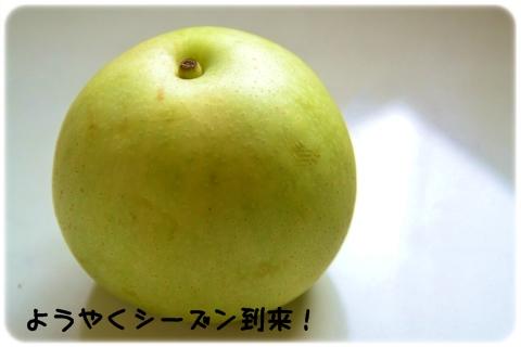 腎悪っこにいい季節 (1)