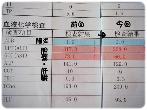 病院H2709 (4)