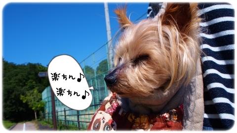 秋服でお散歩その1 (2)