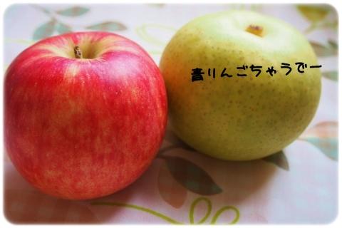 究極の選択2015秋 (2)
