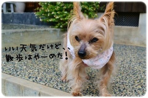 誰あての手紙? (4)