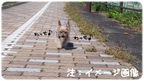 4足歩行バンザイ (3)