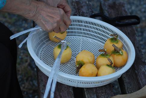 渋柿の皮を剥いた