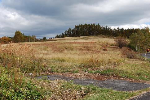 倉越高原の草原が