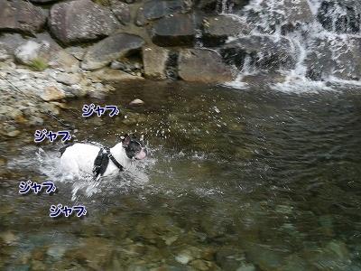 波賀3 (4)