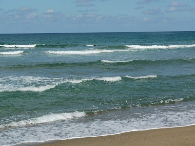 白兎海岸 (2)