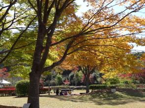 ブログ用秋のまきばの館3