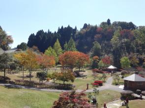 ブログ用秋のまきばの館7