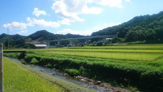 2015-08-23 京丹波 京都縦貫自動車道
