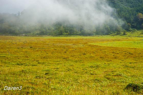 湿原は草紅葉の始まり