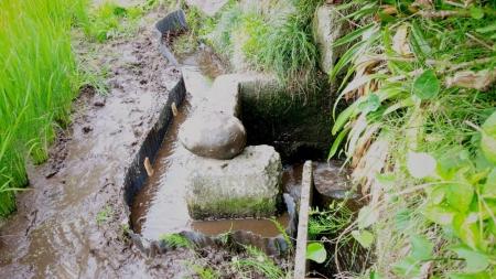 農15-5-16 田6旧水口漏水