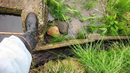 農15-5-16 田6水口水漏れ