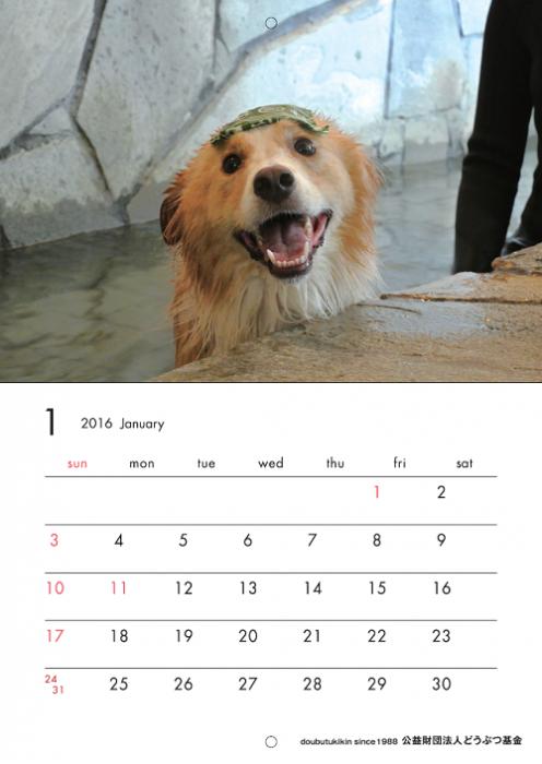 カレンダー2016いぬ1月ブログ用