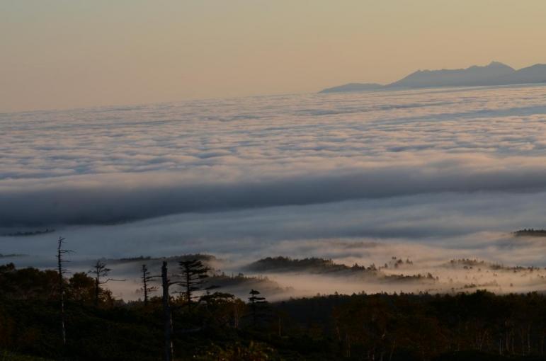 またまた 雲海です