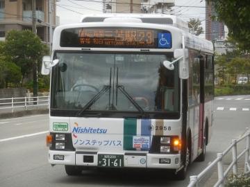 nnr417.jpg