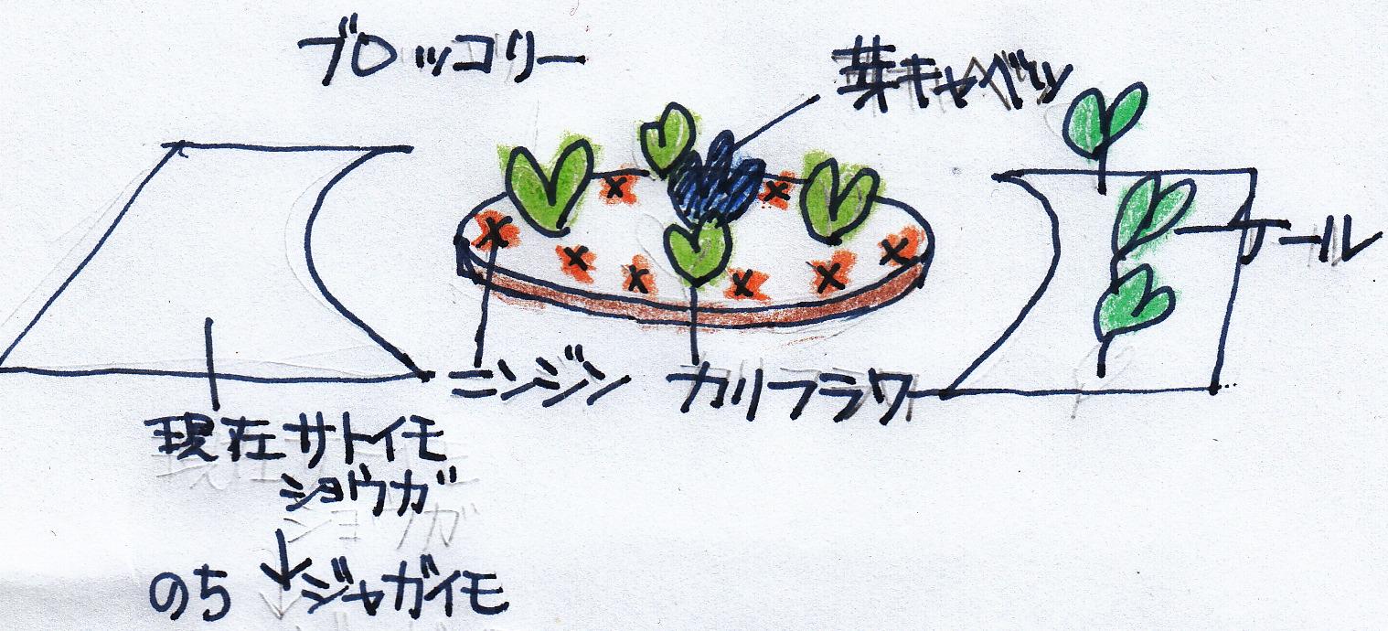 菜園_0001