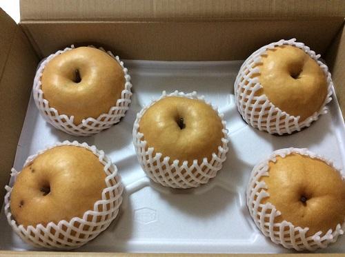横溝洋子さんから送ってくれたナシ25年10月21日
