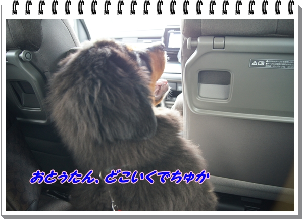 2015-10きららふぁーむ1