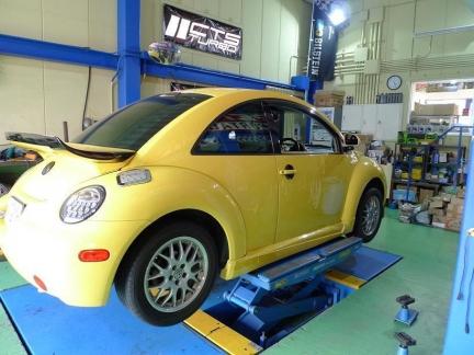 beetle_2015_1023_1.jpg