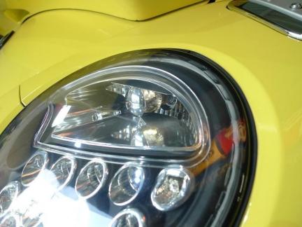 beetle_2015_1023_2.jpg