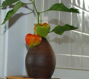 花瓶とほうずき2