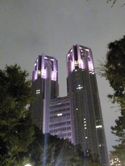 20151011都庁_convert_20151015002924