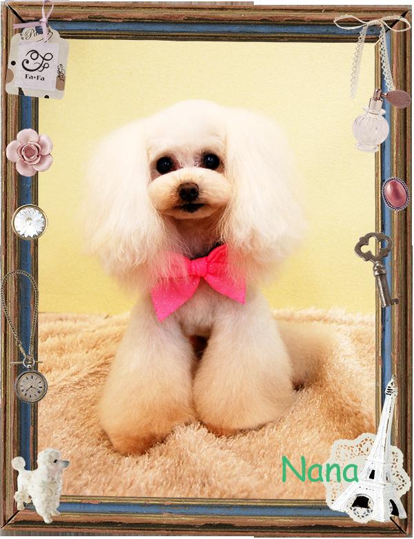 ナナちゃん 森8−1