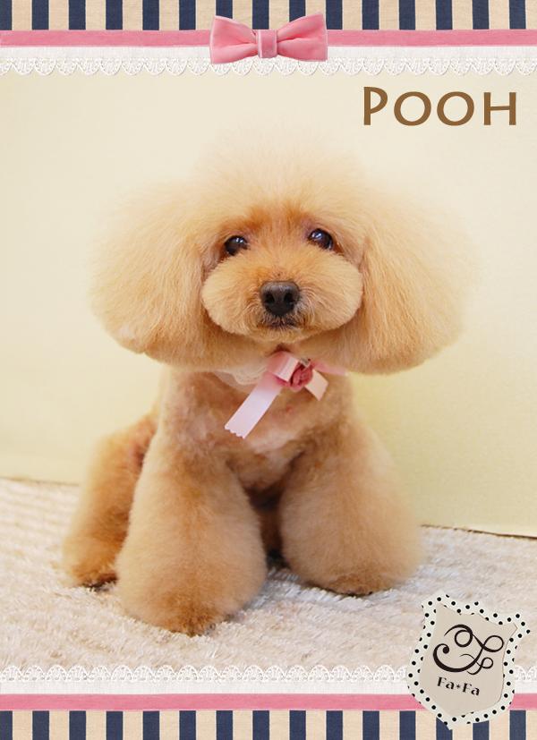 Poohちゃん9-1