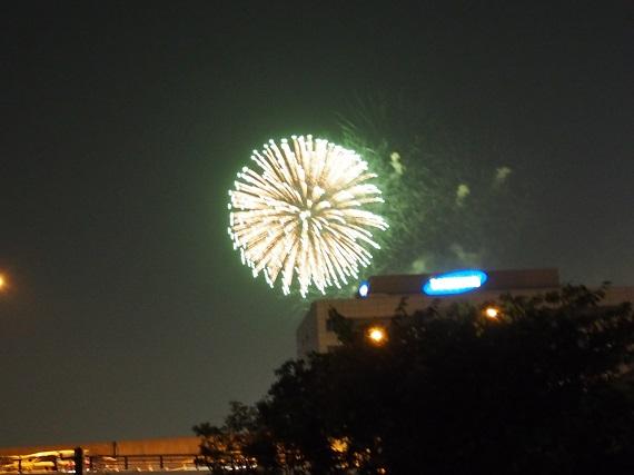 花火3 今日ものんびりと 2015/08/23