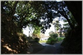 151012E 024塚山公園32