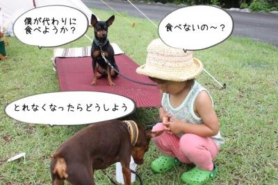 2015_07_20_9999_15.jpg