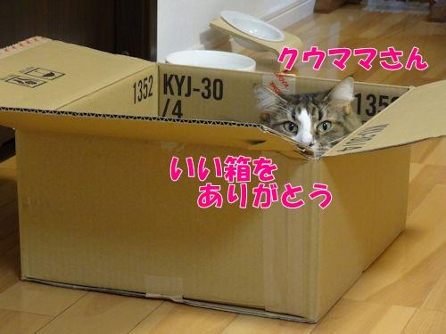 2015102308t.jpg