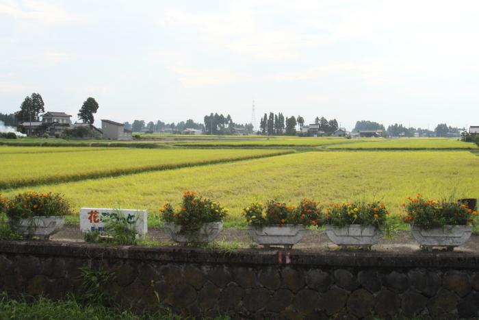 150912-chitetsu-72.jpg