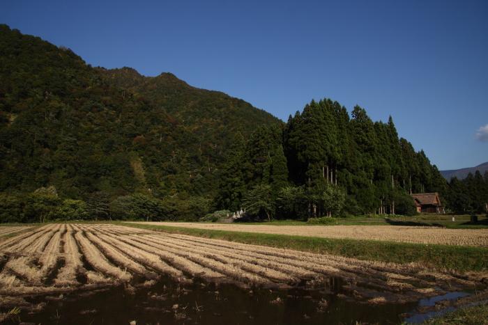 151016-gokayama-08.jpg