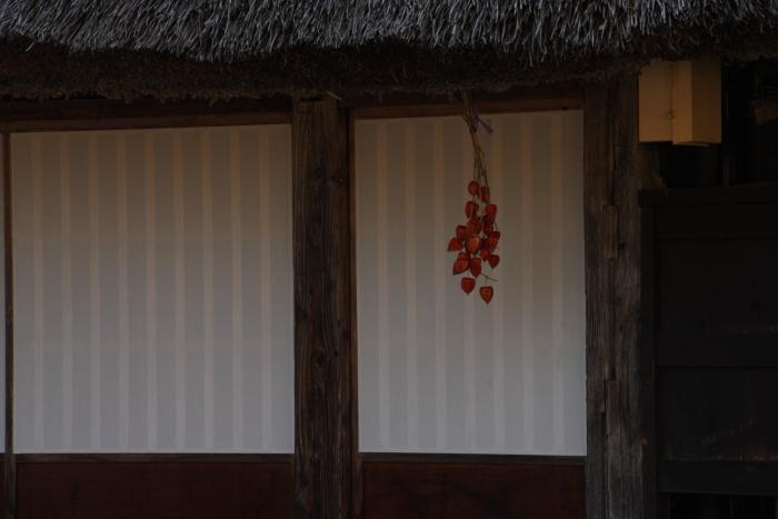 151016-gokayama-11.jpg