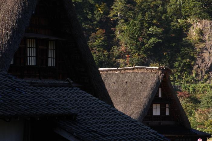 151016-gokayama-15.jpg