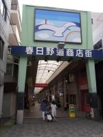 Kasuganomichi_03.jpg