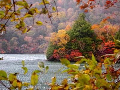 湯ノ湖 兎島